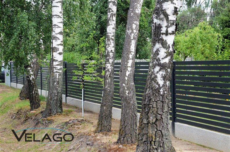 System ogrodzeniowy SPESSO zdjęcie nr 7